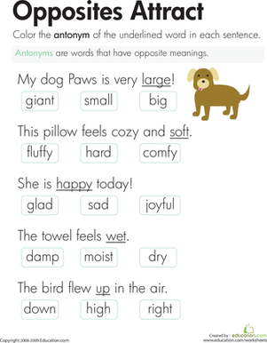 Antonyms Opposites Attract  Worksheet  Educationcom
