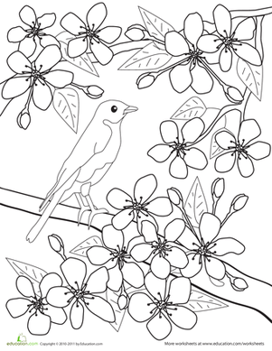 25+ Cherry Blossom Tree Landscape Coloring Pages Pictures ...