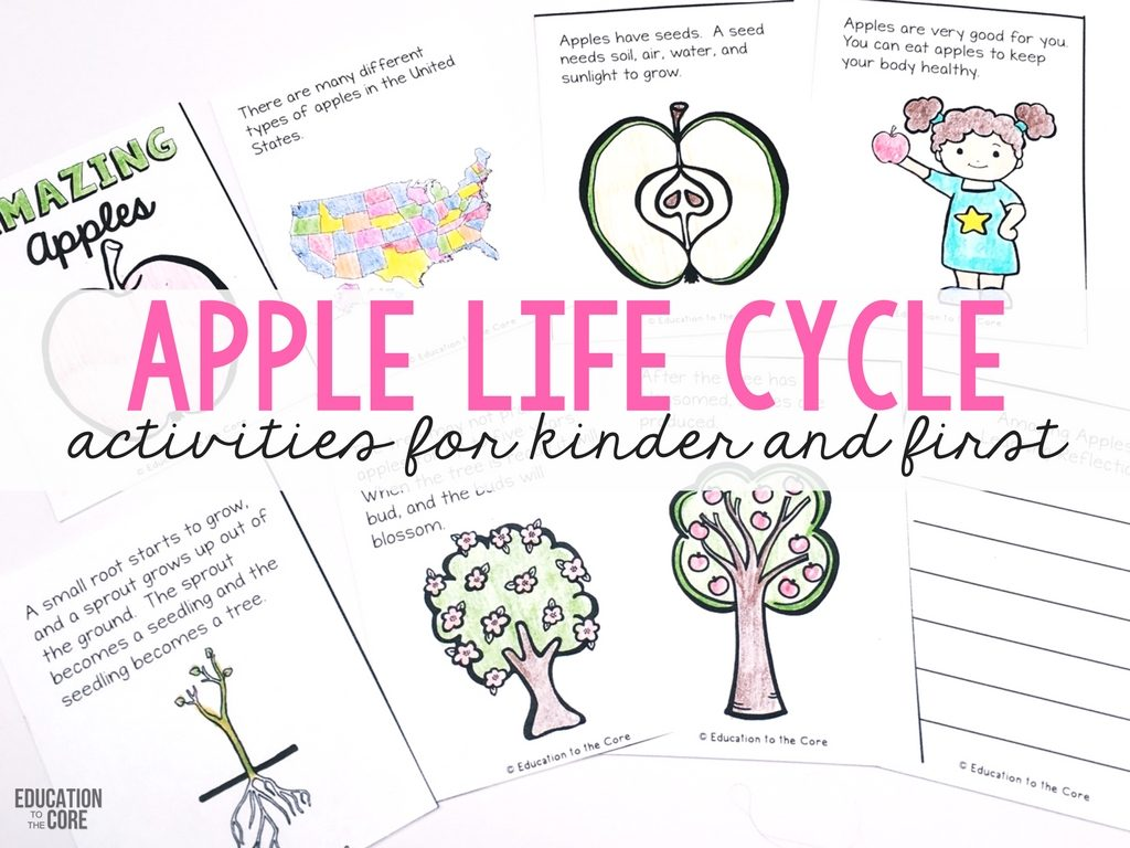 A Week Jam Packed With Apple Life Cycle Fun