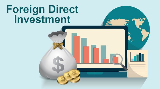 Foreign Direct Investment | Types of FDI | Advantages and ...