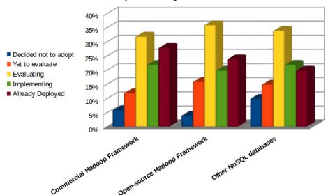 Adoption of Big Data Analytics Tools