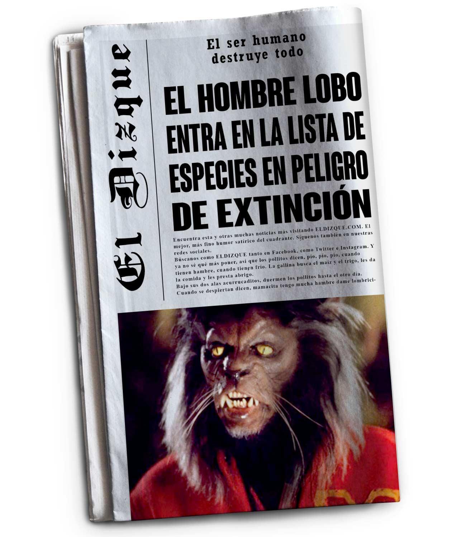 El hombre lobo entra a la lista de las especies en peligro de extinción