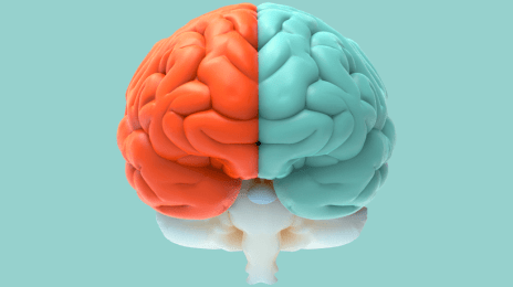 Your Guide To Cognitive Load Theory And Learning