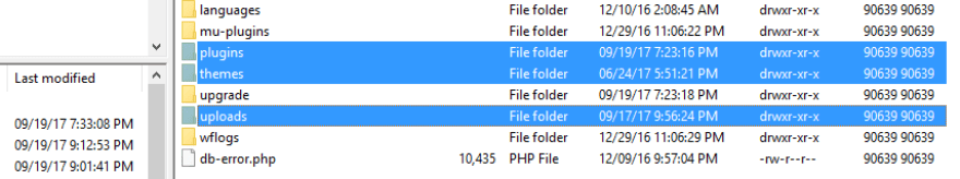 Your plugin, theme, and upload folders.