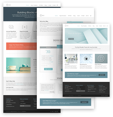layout of divi theme