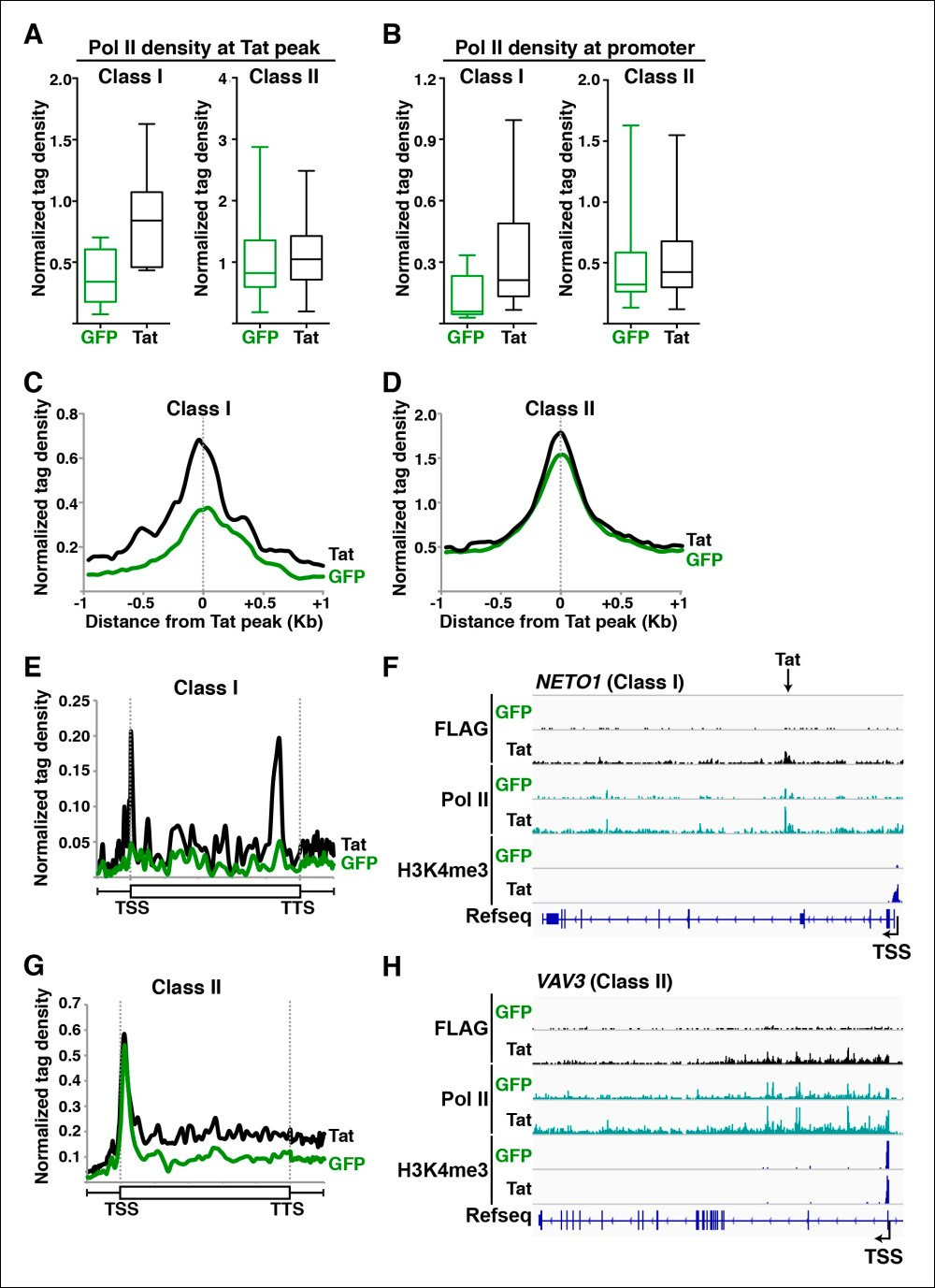 medium resolution of tat promotes pol ii recruitment and pause release at two distinct tsg classes