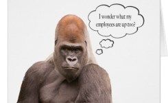 Funny Gorilla Happy Birthday Boss Card