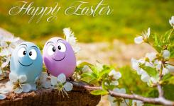 Download Funny Eggs For Happy Easter Stock P O Image Of April Season