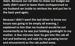How My Husband And I Terrified A Cab Driver This Is Legendary Funny Jokes Story