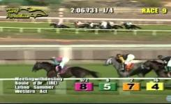 Funniest Horse Racing Ever