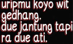 Kata Kata Status Whatsapp Jawa Dan Foto Kata Kata Lucu Bahasa Jawa Untuk Update