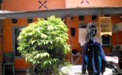 Rumah Dijual Cirebon Rumah Lucu Dijual Cirebon Kejaksn Sili I Pusat Kota Cirebon Img__