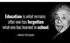 Kata Kata Mutiara Bijak Albert Einstein