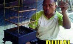 Upstation Id Jangan Asal Main Burung Simak Meme Kocak Burung Ini Paling