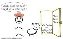Funny Boy Cat Names  Widescreen Wallpaper
