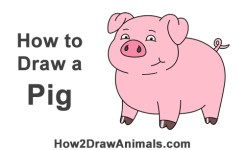 How To Draw A Cute Little Mini Funny Cartoon Pig Piglet