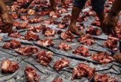 Pengurus Masjid Al-Azhar DKI Akan Antarkan Langsung Daging Kurban ke Warga
