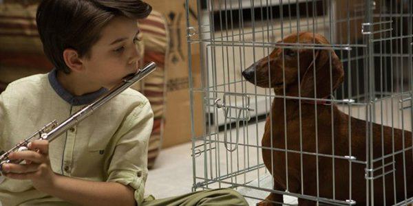 Weiner-Dog 1