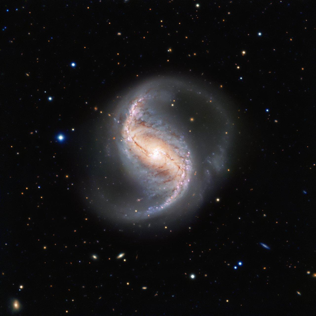 Esta imagen de la semana muestra la galaxia espiral NGC 986 en la constelación de Fornax (el horno). La galaxia, que fue descubierta en 1826 por el astrónomo escocés James Dunlop, no suele ser fotografiada debido a que está muy cerca del famoso y rico cúmulo de galaxias de Fornax. Lo cual es una lástima, ya que esta galaxia no solo es un gran objeto de estudio científico, sino que también es muy hermosa.