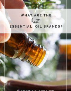 best essential oil brands reviewed for also the  compared rh essentialoilhaven