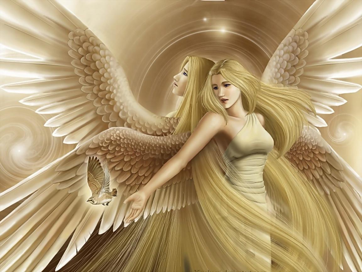 Cute Anime Wallpaper Organizer Book Angel Healing Tickets Delhi Explara Com