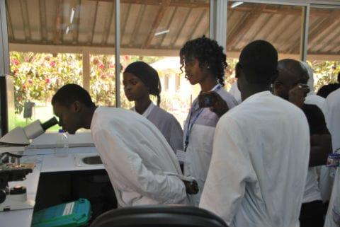 The Gambia University students view Malaria parasites