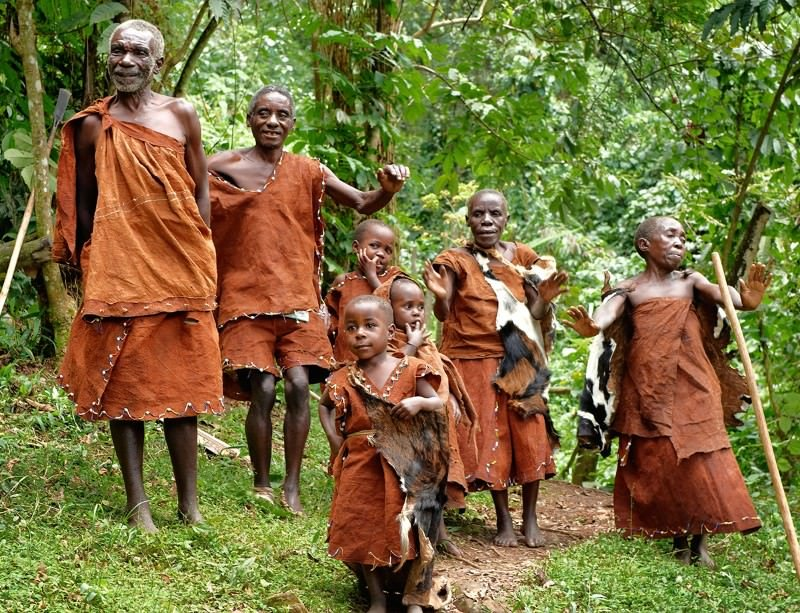 Trees trap 'greenhouse gases' · forests and people · valuing forests, not the trees · building an environmental constituency · 'greed' and deforestation · at. Africa S 7 Most Indigenous People Facing Extinction Page 3 Of 8 Face2face Africa