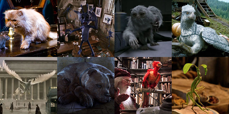 Creature Feature The Many Beasts Of The Potterverse