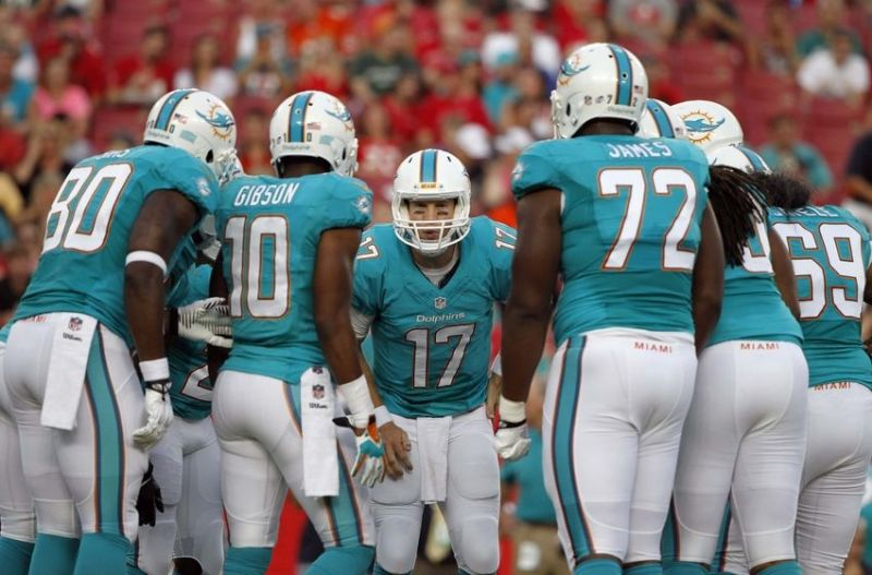 Image result for miami dolphins 2016