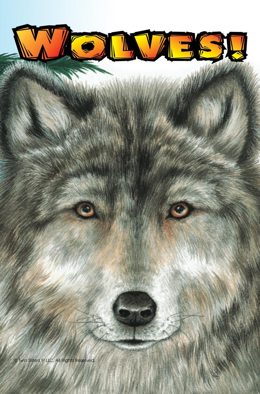 Know it Alls Wolves  FarFaria