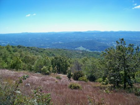 Expired Lot P20 Point Lookout Mtn Farm for Sale