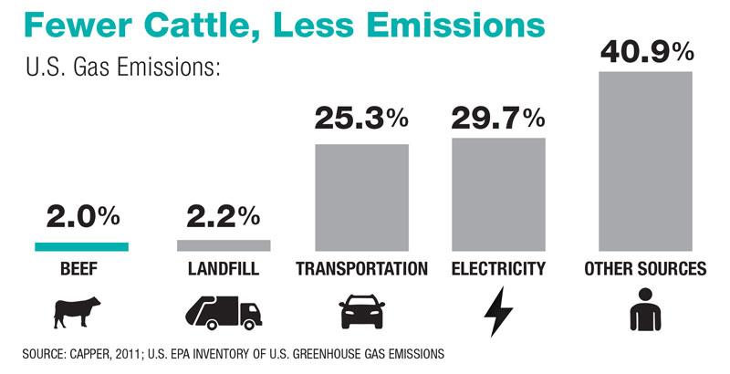 Fewer Cattle, Less Emissions