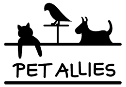 Pet Allies dog adoption contract