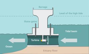 What Is Tidal Energy?