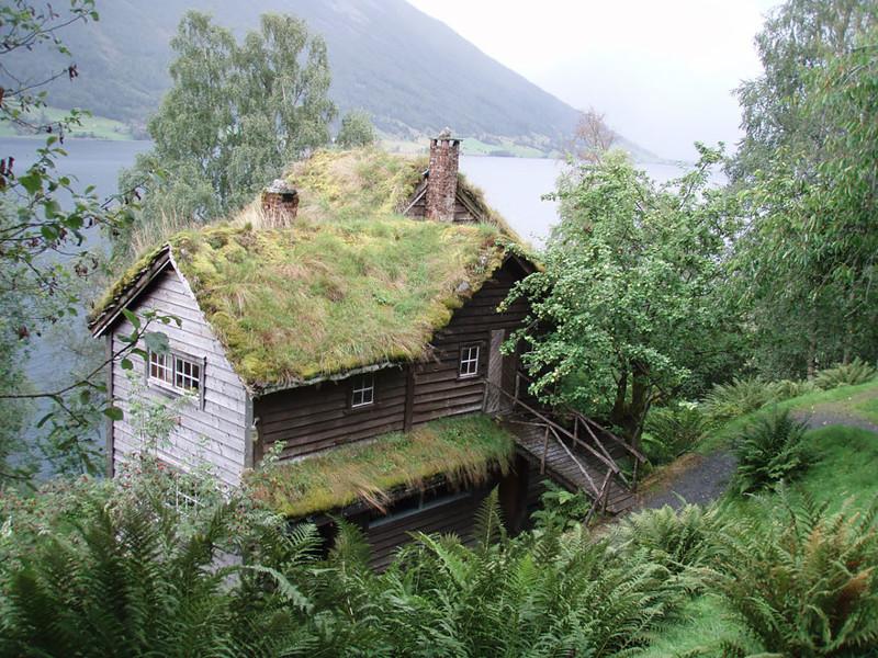Йёльстер, Норвегия  дом, крыша, озеленение, скандинавия