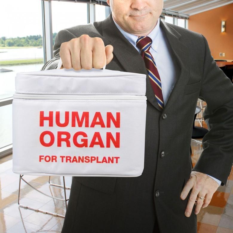 5. На вашем рейсе, возможно, перевозят человеческие органы авиаперелет, самолет, факт