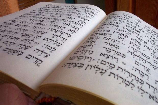 Один народ и так много языков Израиль, евреи, иврит, факты, факты о евреях
