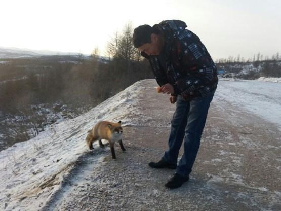 Якутия - это место, где человек живет в тесном контакте с дикой природой! прикол, саха, юмор, якутия