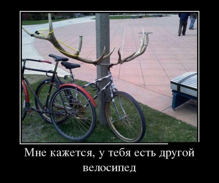 Мне кажется, у тебя есть другой велосипед демотиватор, демотиваторы, жизненно, картинки, подборка, прикол, смех, юмор