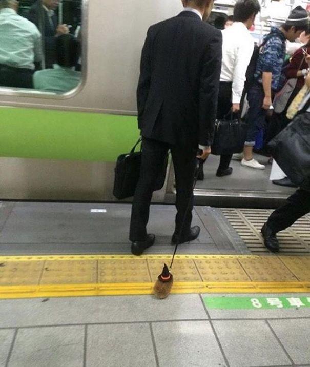 Вместе с хомяком на работу  люди, метро, мир, подземка, прикол, фото, фрик, юмор