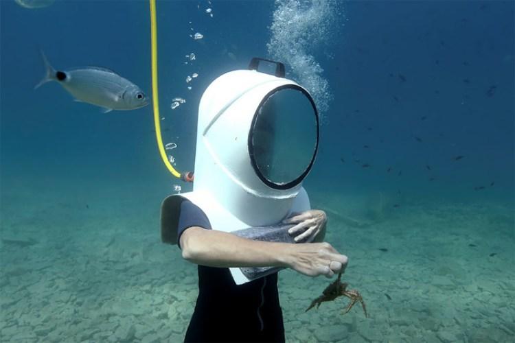 Уникальные чудеса подводного парка в Хорватии, по которому можно гулять пешком красота, парк, под водой, удивительно, хорватия