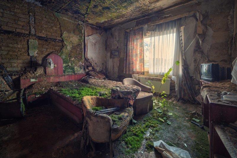 Всё покрывается мхом город, заброшенное, мох, эстетика