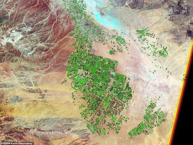 WADI AZ-Sirhan-да жасыл екпелердің өсуін көрсетіп, 2012 жылғы сенсорлы 2012 ж. Сенсұлы - Сауд Арабиясының қаңырап қалған жері