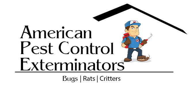 exterminator, local exterminator, bug exterminator, bed