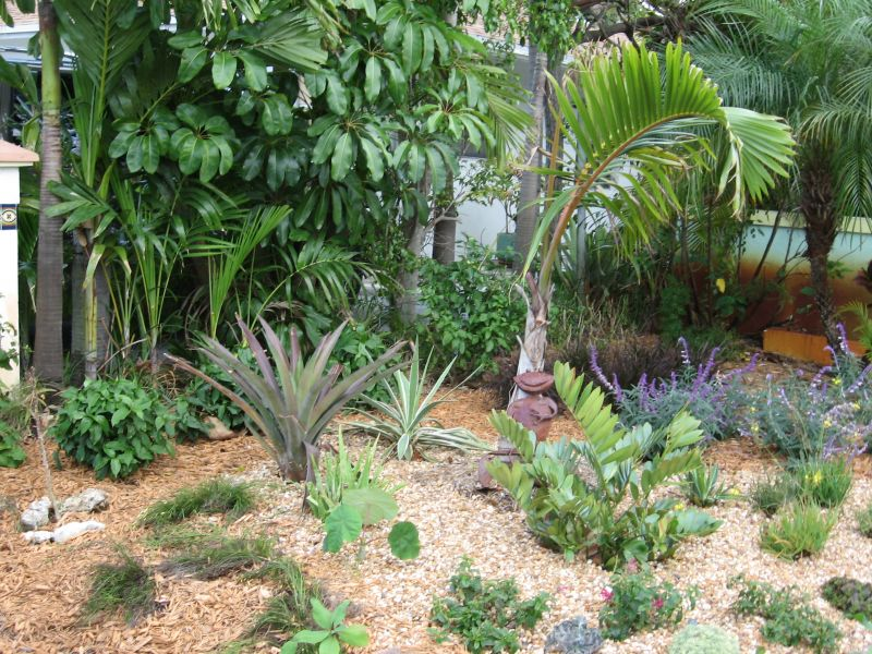 Landscaping Service Fort Lauderdale