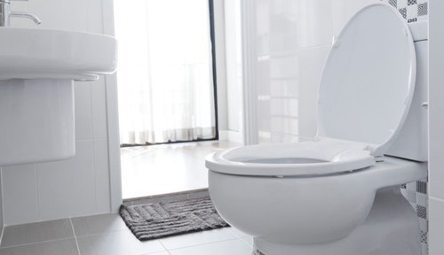 Elongated Vs Round Toilet Pros Cons Comparisons And Costs