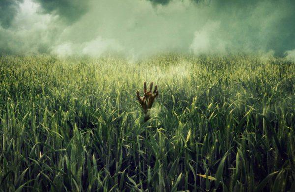 The-Tall-Grass-Final-1-sht-600x390