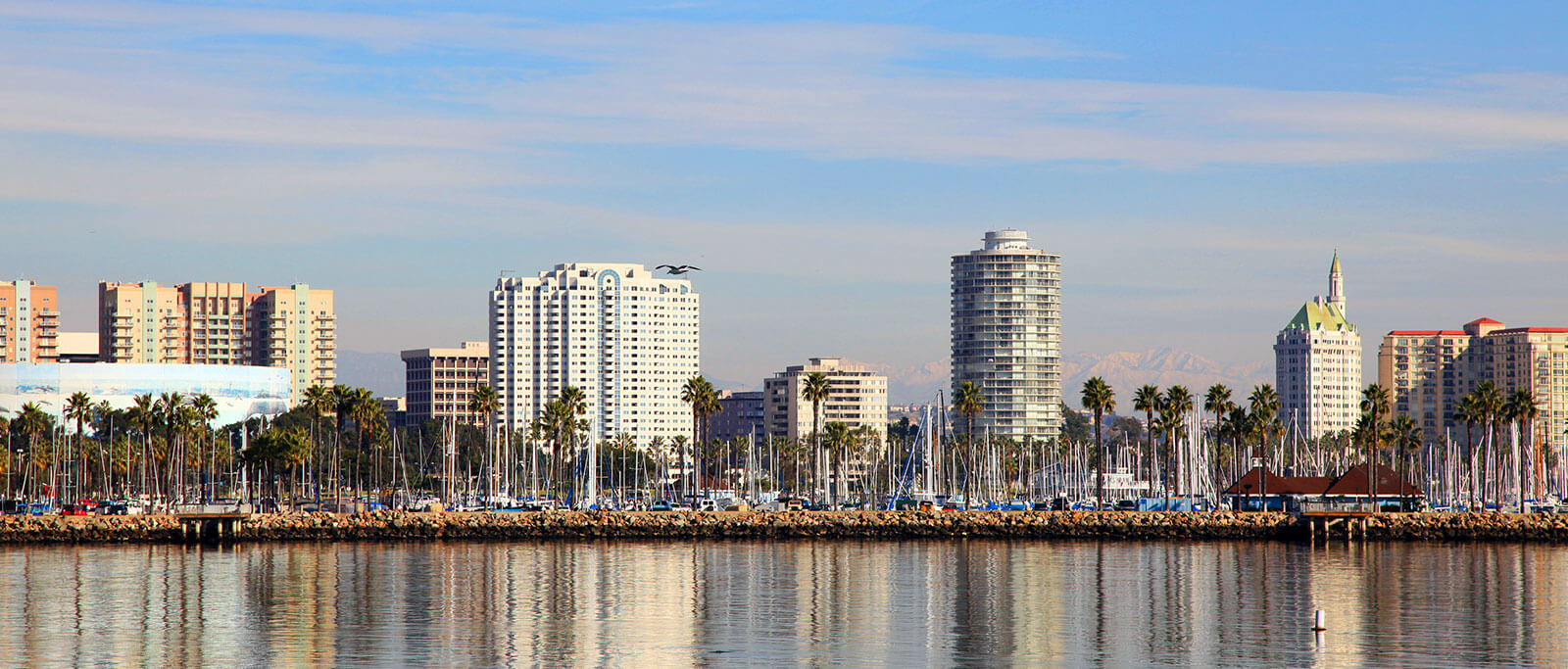 Whether you are in long beach for business or vacation, take time to. Bus To Long Beach Ca From 5 99 Flixbus The New Way To Travel