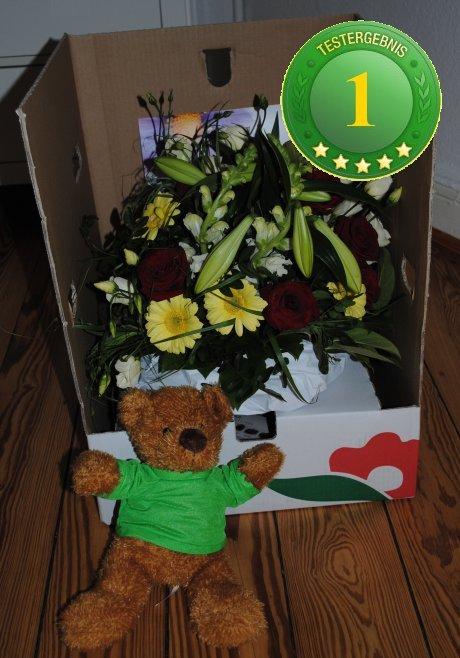 Werksbesichtigung bei Blume2000  bei FloraKingde  das
