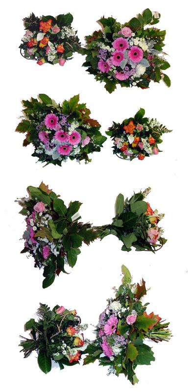 Test Blumen im Expressversand  Fleurop vs FloraPrima  bei FloraKingde  das Original
